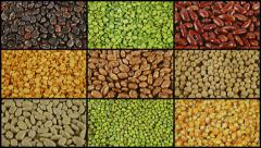 Mix of dried beans background rotation split screen 4k Stock Footage