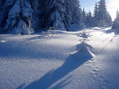 snowy little man - stock photo