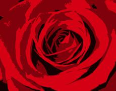 Illustrated roses Stock Illustration