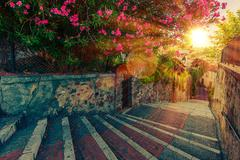 Beautiful Full of Flowers and History Cannes Stock Photos