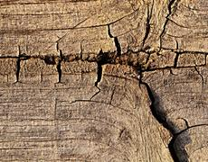 old wood with crack - stock photo
