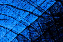 blue spooky shadows - stock illustration