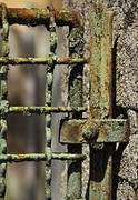 iron of fencing detail - stock photo