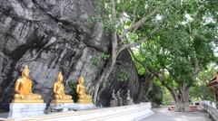 Buddha statue with nature tree and wind at Wat Phra phutthachai Stock Footage