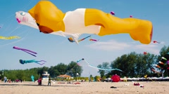 Big Inflatable Orange Bear and Shark Kites Flying on The Beach Stock Footage
