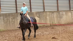Boy does exercise while rides dark bay horse in circle at open area Stock Footage