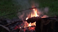Campfire with sausages Stock Footage