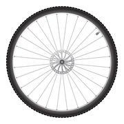 Bicycle wheel, vector Stock Illustration