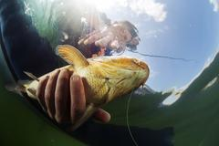 Fisherman with fish Stock Photos