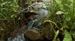 Small Fast Paced River - stock footage