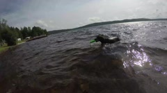 Black hound dog retrieving water toy in lake and shaking off Stock Footage