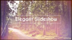 Elegant Glass Lines Slideshow Stock After Effects