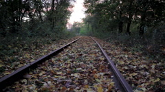 Boy in autumn forest - stock footage