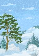 Winter Christmas Landscape with Trees and Snow Stock Illustration