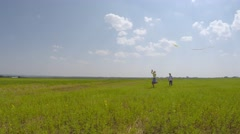 Children playing with a kite in the meadow. - stock footage