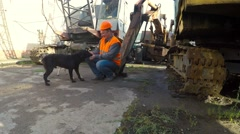 Builder is played with stray dogs Stock Footage
