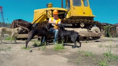 The driver of the bulldozer is played with stray dogs Stock Footage