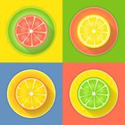 Citrus fruits four icons Stock Illustration