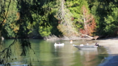 Blurred cove with small boats Stock Footage
