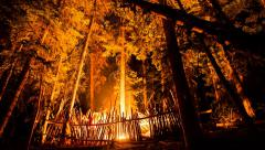 Timelapse man in shelter burns wood at night Stock Footage