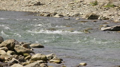 Fast mountain river with rocky shores Stock Footage