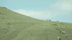 Riders on the hill Stock Footage