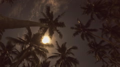 Beach at Night with a Full Moon and Coconut Palms. Timelapse Stock Footage
