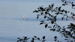Paddleboards on water Stock Footage