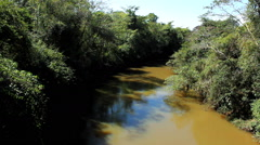 Amazon River, South America Stock Footage