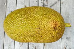 Giant Jackfruit Stock Photos