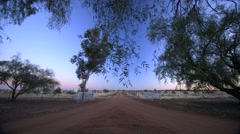 Iconic Australian outback farm road horizon perspective, tilt to sky, dawn birds - stock footage