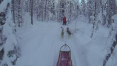 Husky Dog Sled travels fast in Lapland, Sweden, Arctic Circle Stock Footage