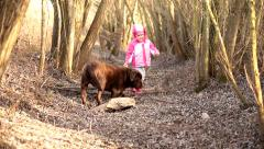 Little girl with a Brown Labrador retriever in winter Stock Footage