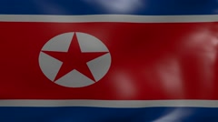 north korea strong wind flag - stock footage