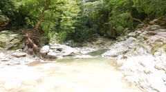The riverbed Psakho, Sochi, Russia. 1280x720 Stock Footage