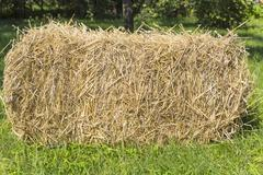 The bale of straw Stock Photos