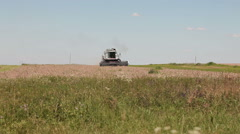 Harvester in the afternoon harvests Stock Footage