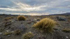 The Pampas Time Lapse (Patagonia, Argentina) Stock Footage