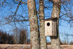 Waterfowl birdhouse on tree - stock photo