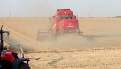 Combine Harvester and tractor Working a Wheat Field Stock Footage