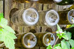 empty wine bottles in a rack with wine leaves - stock photo