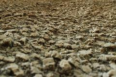 Close up perspective of igneous boulder surface texture, with camera at surfa - stock photo