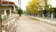 POV walk along city suburb alley, low-rise houses, yellow blossoming tree Stock Footage