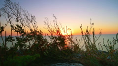 Sunset and dune grass in the foreground on wind Stock Footage
