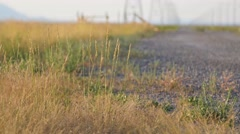 Powerlines and grass rack focus Stock Footage