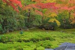 zen garden at fall season at japan at Rurikoin - stock photo