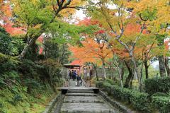 Autumn Leaves Of Adashino Nenbutsu-ji - stock photo