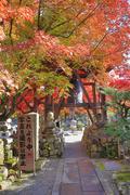 Autumn Leaves Of Adashino Nenbutsu-ji Stock Photos