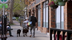 Boulder Colorado Walking Dogs Stock Footage