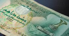 Ten dirhams of the United Arab Emirates close up - stock photo